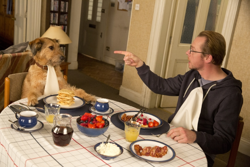 absolutely anything 3